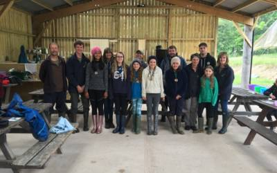 Hare Class Residential