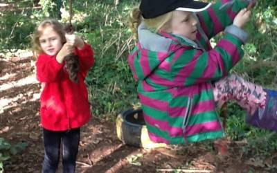 Swallow Class Forest School Morning